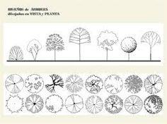Resultado de imagen para representacion de arboles en planta y alzado