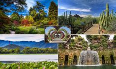 From cacti in the American desert to moss in a Japanese temple: The incredible GARDENS you can visit around the world | Daily Mail Online