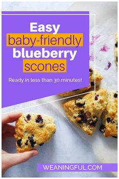 Ready in less than 30 minutes, this scone recipe is easy to remember as 3-1-2 and will be approved by even the pickiest of toddlers or older kids. Sweetened only with fruit, it makes a great meal idea for baby led weaning, whether it is breakfast, brunch or snack time.