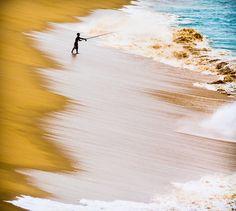 GoBajaCA | Surf Fishing, Cabo San Lucas