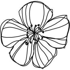 natali_design_apple_doodle1.png