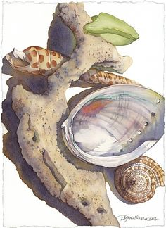 Beach Glass and Coral by Barbara Groenteman Watercolor ~ x