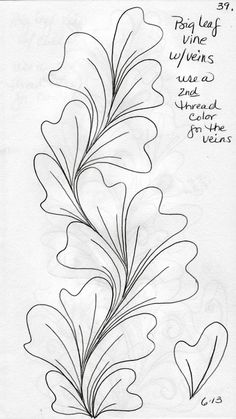 Big Leaf Vines by LuAnn Kessi: Quilting Sketch Book. Love this shape! Quilting Stencils, Longarm Quilting, Free Motion Quilting, Machine Quilting Patterns, Quilt Patterns, Zentangle Patterns, Zentangles, Quilt Stitching, Quilting Tutorials