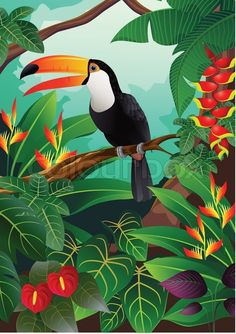 Get this hi-res stock vector vector illustration of Tropical bird. Buy as single download or save up to 90% with a subscription.