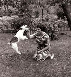 Vintage Photo Woman with Little Dog Terrier by CassiesTaleVintage