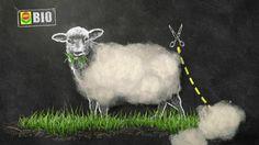 COMPO BIO Universal Langzeit-Dünger mit 50% echter Schafwolle. Einzigartiger, rein organischer Naturdünger für alle Gartenpflanzen. Mit natürlicher Sofort und 5 Monaten Langzeitwirkung. Nur 1 x düngen pro Saison. #schaf #schafwolle #dünger