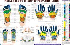 reflexology of feet and hands