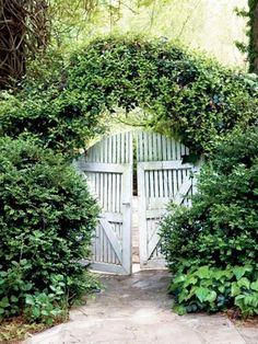 Here's a great way to have garden gates and greenery too!