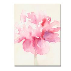 """Pink Peony"" Canvas Art"