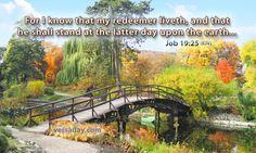 """Job 19:25 (1611 KJV !!!!) """" For I know that my reedemer liveth, and he shall stand at the latter day upon the earth."""""""