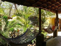 Tamarindo Backpackers in Playa Tamarindo, Costa Rica - Lonely Planet