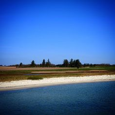 Sommer på Bågø #visitfyn #fyn #nature #nature_perfection #visitdenmark #mothernature #natur #denmark #danmark #dänemark #landscape #assensnatur #assens #mitassens #nature #vildmedfyn #fynerfin #vielskernaturen #visitassens #instapic #picoftheday #summer2016 #sommer