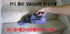 Product Review: Shark Cordless Pet Perfect II 18-Volt Handheld Vacuum | New Dog Owners
