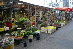 Bloemen markt Amsterdam.