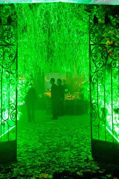 eerie, park-inspired look with an entry draped in branches and lit in green