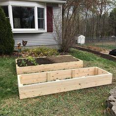 DIY Raised Garden Beds   Easy and Cost Effective Ways to Garden