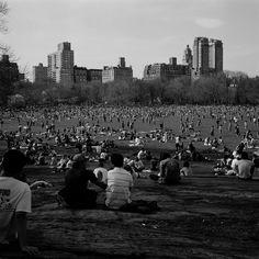 Mittagspause im Central Park