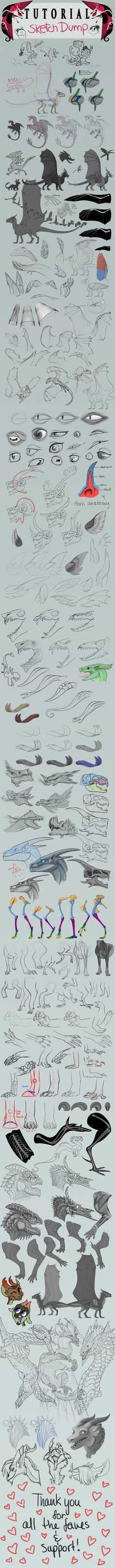 Some anatomy. Dragons resources! by SammyTorres.deviantart.com on @deviantART #monster #design #concept #art #creature #beast #lizard #reptile #wings #skull #bones #muscles #howto #tutorial