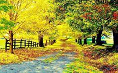 40 Autumn Scene Background Wallpaper for Desktop