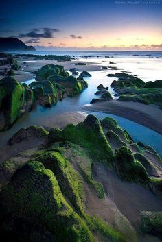 Algarve Portugal green natural wonders!