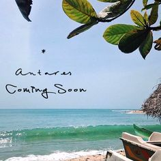 #AntaresGoa #ComingSoon #surf #sunandsand #beachholiday #fun #sun #party #Vagator #Goa #clubbing #lounge #beachshack Art Restaurant, Beach Shack, Beach Holiday, Coming Soon, State Art, Beach Club, Goa, Surfing, Lounge