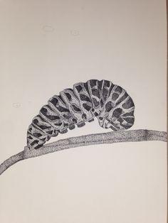 oruga, insecto, puntillismo, diseño, blanco y negro