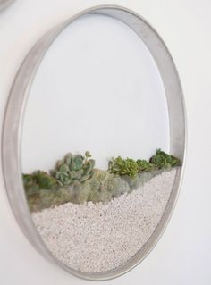 Minimalist Vertical Garden for Succulents and Air Plants A vertical garden is easier to grow than you think. Kim Fisher has created a circular planter for air plants and succulents that will hang on. Vertical Garden Planters, Vertical Gardens, Succulents Garden, Wall Planters, Wall Vases, Hanging Planters, Backyard Planters, Hanging Terrarium, Air Plants