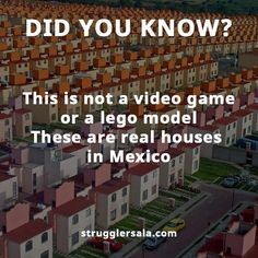 Struggle Facts, Quotes, Wallpapers and Stories True Interesting Facts, Some Amazing Facts, Interesting Facts About World, Intresting Facts, Unbelievable Facts, Interesting Information, Wierd Facts, Wow Facts, Real Facts