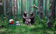 woods illustration - Google Search