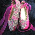 decorated pointe shoes by Pointe Variation