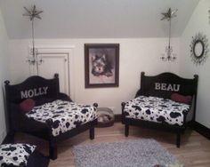 My two Yorkies bedroom