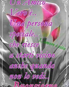 Good Day, Good Morning, Italian Greetings, Italian Life, Pebble Mosaic, Morning Greeting, Family Quotes, Encouragement, Wisdom