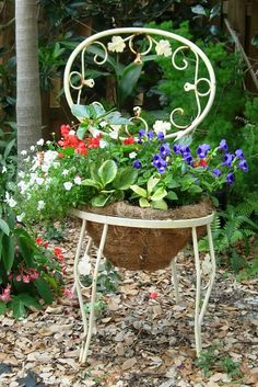 A pretty garden chair planter