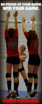 #volleyballquote