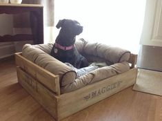 Here we are presenting DIY recycled pallet dog beds plans that are not only economical but at the same time looks different and unique. In this article, we are presenting mind-blowing plans to construct the DIY pallets wood dog bed. Dog Cave, Gatos Cool, Pallet Dog Beds, Diy Dog Bed, Dog Furniture, Pallet Furniture, Dog Rooms, Animal Projects, Pet Beds