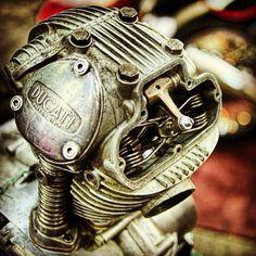 Ducati 250 bevel single