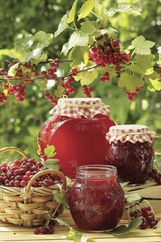 Time to harvest red currants - or to buy them - and make jam or jelly Country Women, Country Farm, Country Life, Country Living, Currant Jelly, Vie Simple, Down On The Farm, Farm Life, Chutney