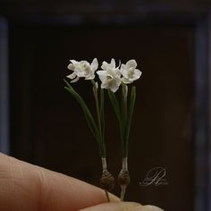 Mini Plants, Miniature Plants, Planting Flowers, Doll Clothes, Minis, How To Make, Handmade, Fairy, Gardens