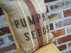 Pumpkin Seeds grainsack Pillow