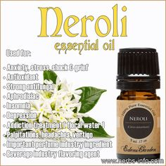 Uses And Benefits Of Neroli Essential Oil (Full Guide)
