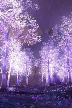 Purple everywhere....