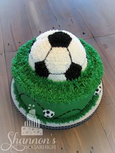 """Soccer ball cake (top down / back view) with fondant accents in white, black, and green. Bottom tier is a 10"""" round vanilla cake with vanilla buttercream frosting. Top tier is a 6"""" diameter semi-sphere soccer ball chocolate cake with chocolate buttercream filling and chocolate and vanilla buttercream frosting. Keywords: grass, birthday, boy. sports."""