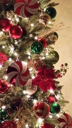 A Beautiful Tree...By Cynthia Schurr