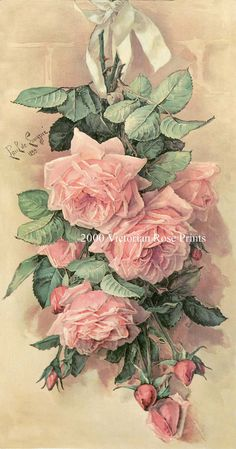 PRINT FREE SHIP Pink Cabbage Roses Paul de by VictorianRosePrints,
