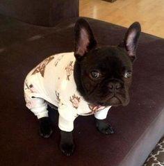 in pigiama!