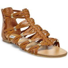 Steve Madden Women's Cretee Sandals ($20) ❤ liked on Polyvore featuring shoes, sandals, flats, cognac, flat gladiator sandals, steve madden flats, strappy gladiator sandals, strap sandals and strappy flats