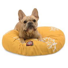 French Bulldog on the 'Coral Round Dog Bed', available...
