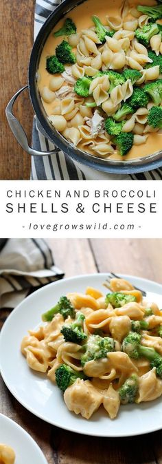 Healthy Meals Perfectly creamy homemade shells and cheese made with chicken and broccoli. Everyone loves this easy weeknight meal! - Perfectly creamy homemade shells and cheese made with chicken and broccoli. Everyone loves this easy weeknight meal! Easy Dinner Recipes, Pasta Recipes, Cooking Recipes, Healthy Recipes, Budget Cooking, Fall Recipes, Couscous Recipes, Tilapia Recipes, Tofu Recipes