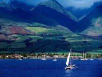 1.Maui : Top 25 Islands in the World