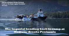 Cleanup at MuQwin / Brooks Peninsula Video Clip
